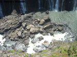 Victoria Falls 06